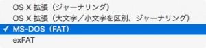 005_FormatType00